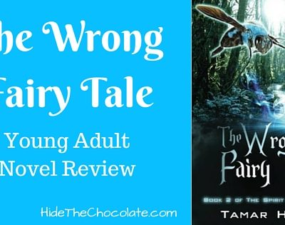 The Wrong Fairy Tale Book Review: YA Novel