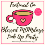 wsi-imageoptim-blessed-momdays-link-up-party-3