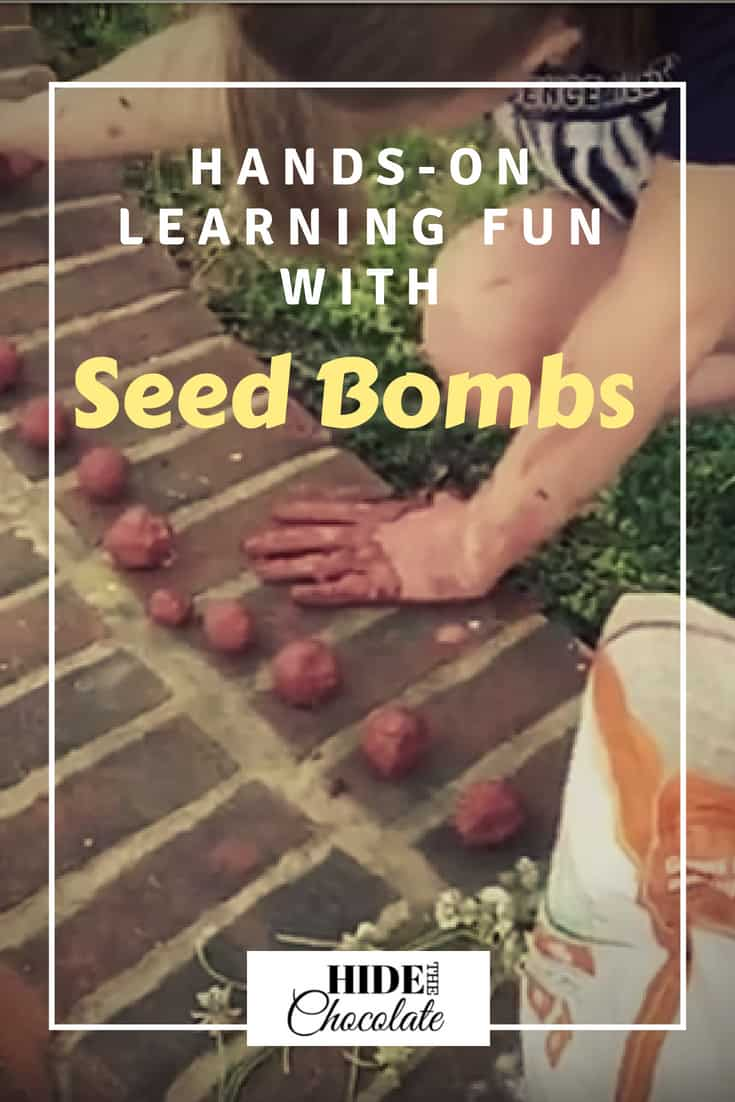 Hands-On Learning Fun with Seed Bombs ~ Seed bombs are loads of fun for kids. They combine playing in mud, nature study, and making squishing noises with your hands. Science doesn't get much better than that! #homeschool #naturestudy