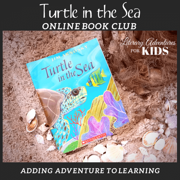 Turtle in the Sea Online Book Club Square