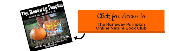 CTA The Runaway Pumpkin Book Course