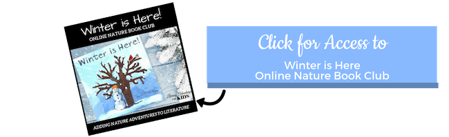 CTA Winter is Here Book Course
