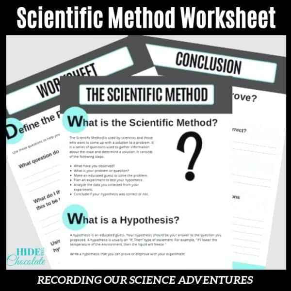 Scientific Method Worksheet Woo