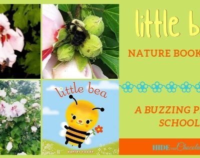 Little Bea Nature Book Club ~ A Buzzing Party School!