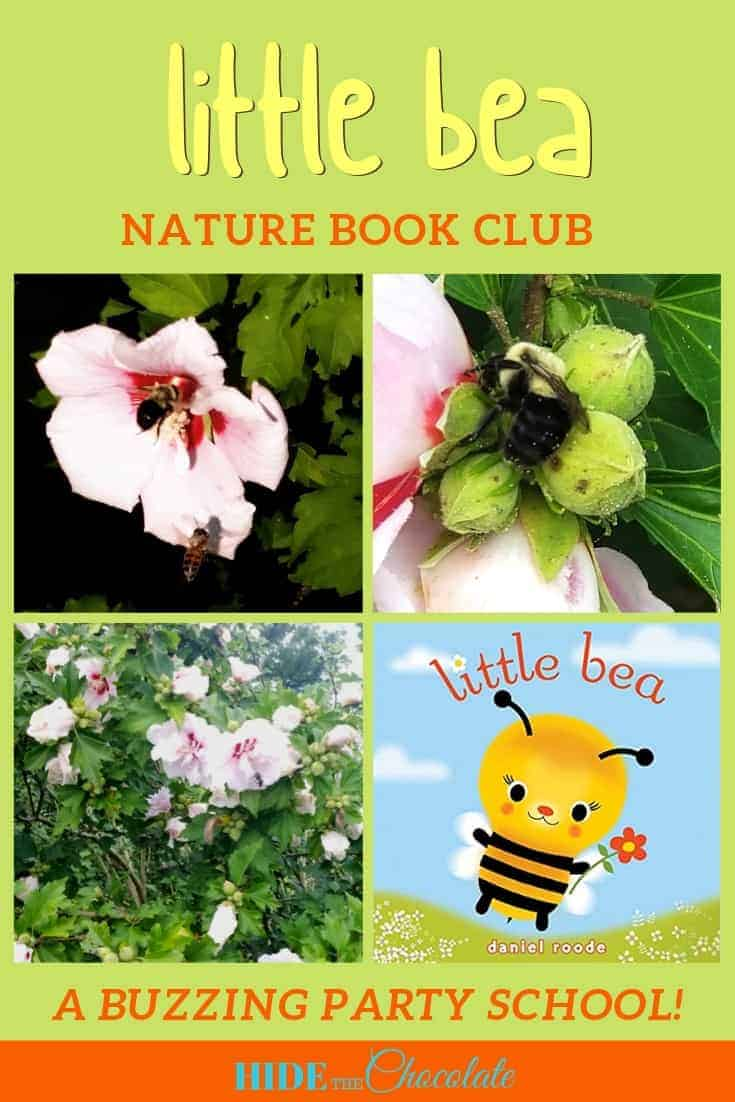 Bees, Honey, and Pollinators were how we celebrated our latest nature book club, Little Bea Nature Book Club.