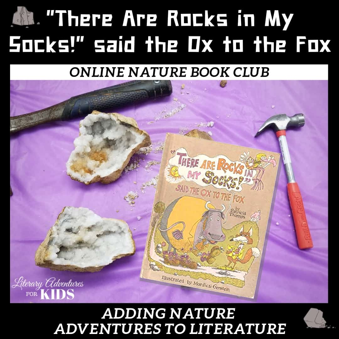There Are Rocks in My Socks Online Nature Book Club Woo