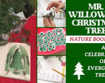 Mr. Willowby's Christmas Tree Nature Book Club ~ A Celebration of Evergreen Trees