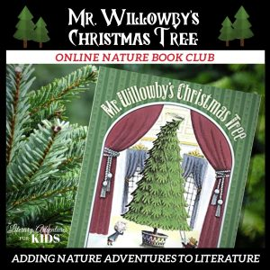 Mr. Willowby's Christmas Tree Online Nature Book Club Woo